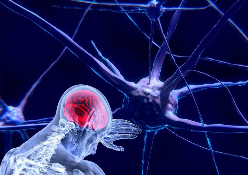 Cómo vender más aplicando las Neurociencias